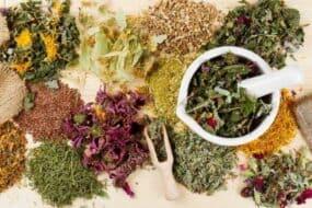 Τα καλύτερα και πιο δραστικά βότανα για απώλεια βάρους και αποτοξίνωση