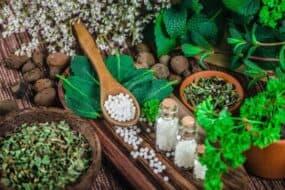 Τα 10 καλύτερα προσαρμογόνα βότανα