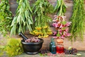 Τα καλύτερα βότανα που βοηθούν στην πέψη και στην χώνεψη
