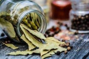 Φύλλα Δάφνης: Θαυματουργά και άκρως θεραπευτικά